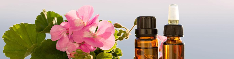 Rose Geranium Essential Oils - Pietermaritsburg, South Africa
