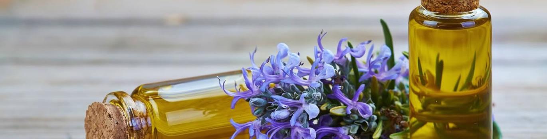 Rosemary Essential Oils - Pietermaritsburg, South Africa