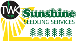 Sunshine Seedling Services
